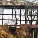 golets-snowdrop-house5